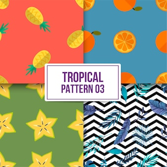 Bundle tropical pattern