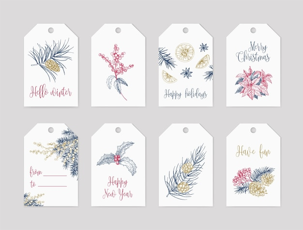 Bundle of winter holiday label or tag templates decorated with seasonal plants hand drawn with contour lines on white space and festive lettering