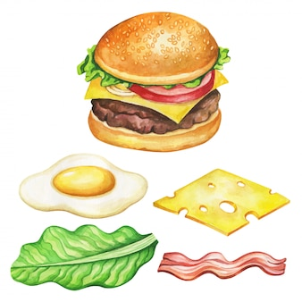 Burger ingredients watercolor.