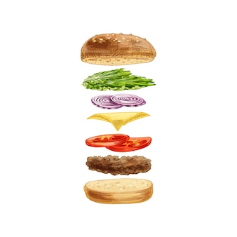 Burger with flying ingredients on white background. vector vintage hatching