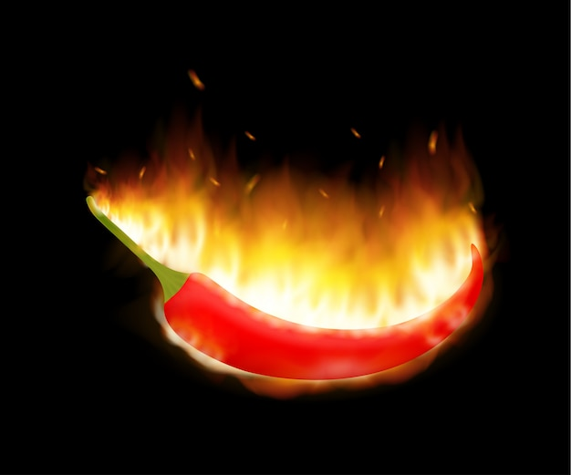 A burning hot spicy red chilli pepper in flames. extra spicy pepper. vector illustration.