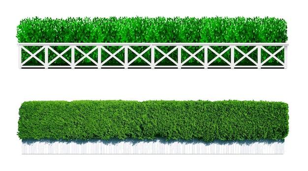 緑の生け垣の形で茂み。観賞植物。庭または公園。柵のセット。ベクトルグラフィックス