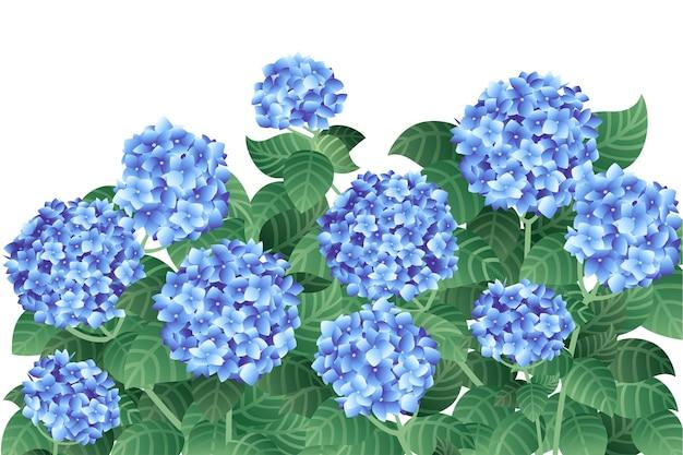 녹색 줄기와 잎 평면 벡터 일러스트와 함께 푸른 수국 꽃의 부시