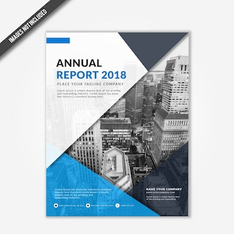 Business annual report 2018 template with blue triangle