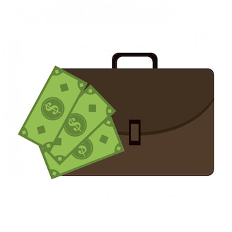 Business briefcase and cash