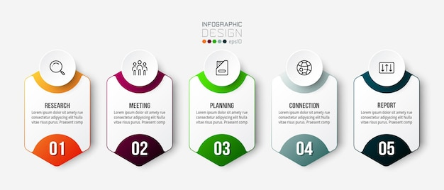 Business concept infographic template with option