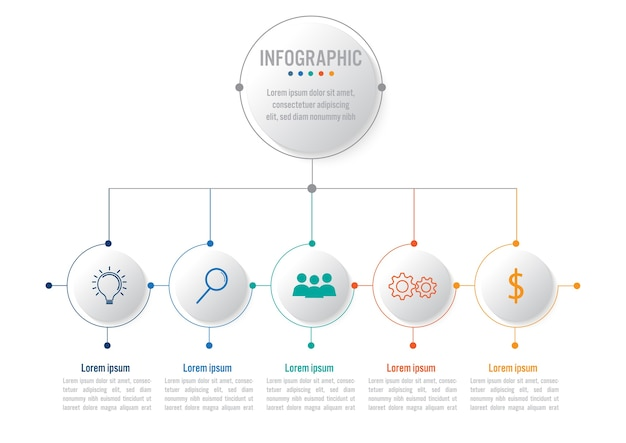 Business infographic template with 5 options circular shape