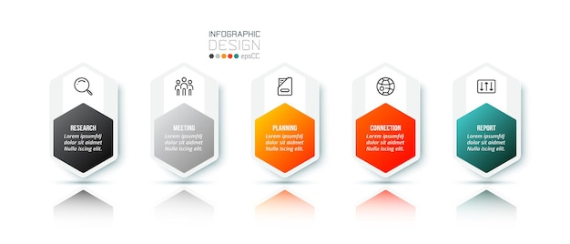 Business infographic template with option
