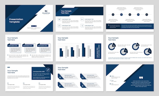 Business presentation with infographic elements