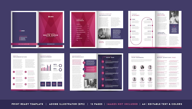 Business white paper and company confidential document design