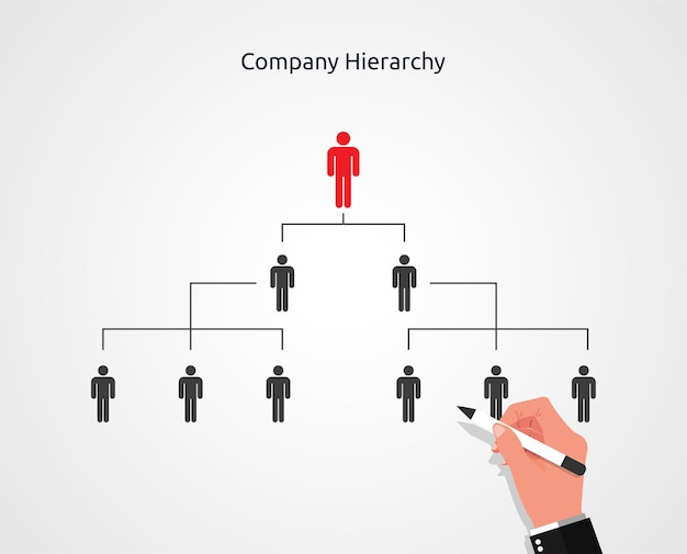 Businessman hand drawing of company or organization hierarchy