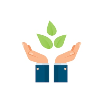 Businessman hands holding plants