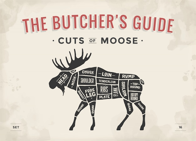 Butcher diagram, scheme - moose