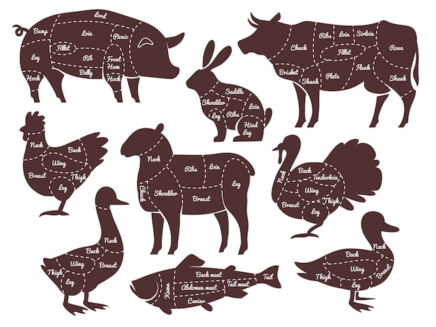 Butcher diagrams cutting lines different parts domestic farm animals silhouettes