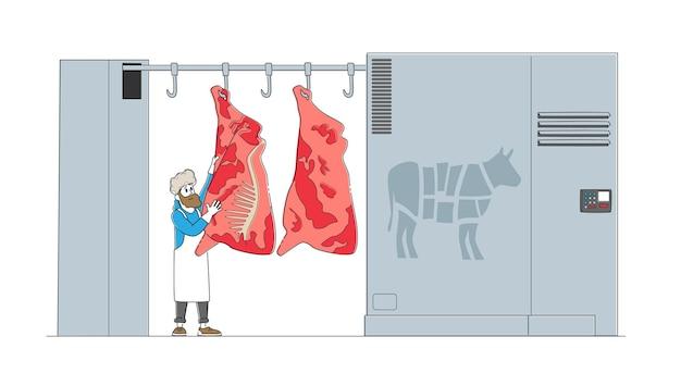 Стенд мужского персонажа мясника на крючке из сырой коровьей туши на мясокомбинате с автоматизированным оборудованием для производства говядины.