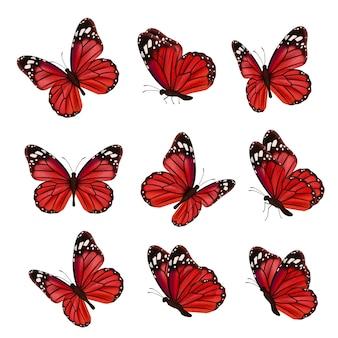 蝶のコレクション。美しい自然色の飛んでいる昆虫観賞用の翼蛾リアルな蝶。色付きの昆虫の蛾の飛行、自然なハエのイラスト