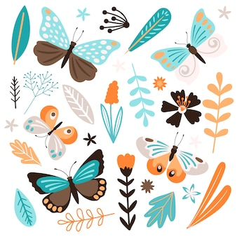 Butterflies and floral elements   on white background