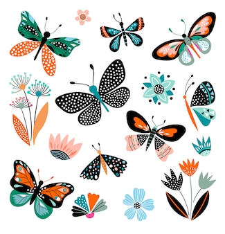 Butterflies and flowers, hand drawn collection of different elements, isolated