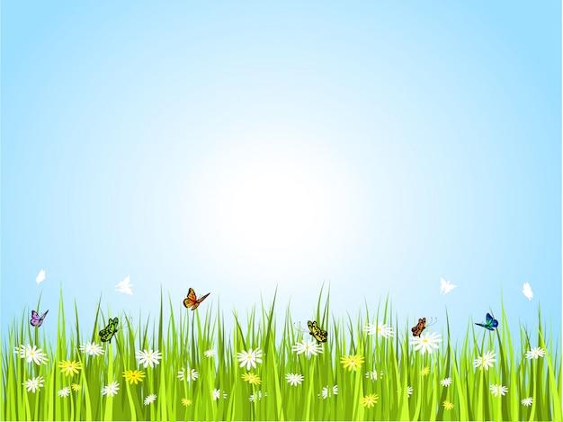 Butterflies in grass