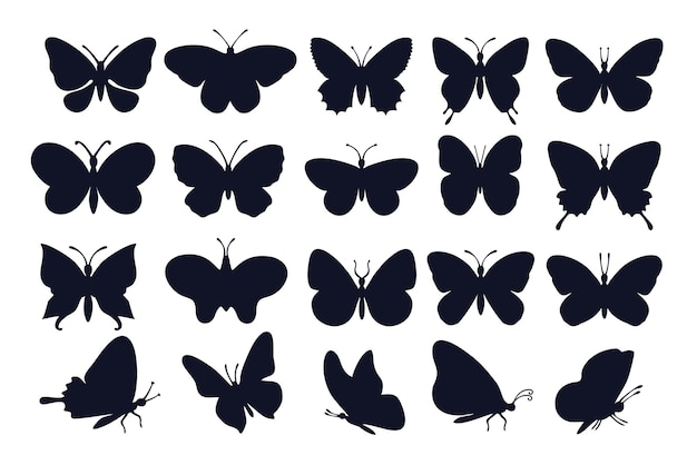 Butterflies silhouettes.  different types of butterflies icons.