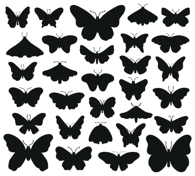 Butterflies silhouettes. hand drawn butterfly, drawing insect graphic. black drawing butterflies silhouettes   illustration set. insect butterfly black silhouette, hand drawn form