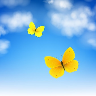 Бабочка и небо с градиентной сеткой иллюстрации