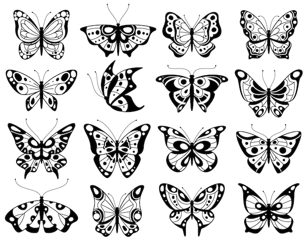 Butterfly as stylized exotic butterflies silhouettes illustration