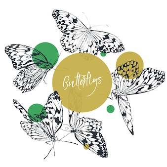 Butterfly classic collection in black and white with green bright dots.