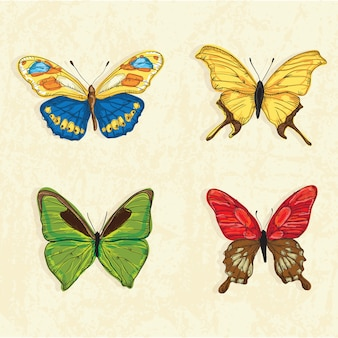 Butterfly icons ( collection set )  on vintage background