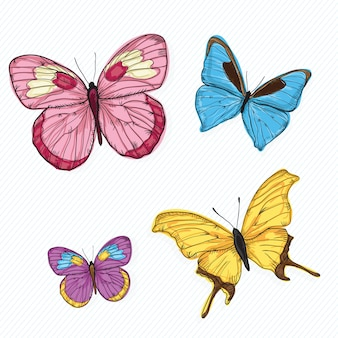 Butterfly icons ( collection set )  on white background