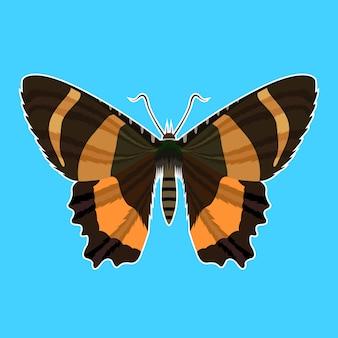Butterfly illustration pop art vector