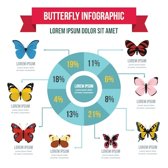 Butterfly infographic template, flat style