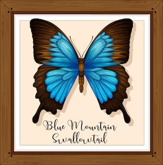 木製フレームの蝶