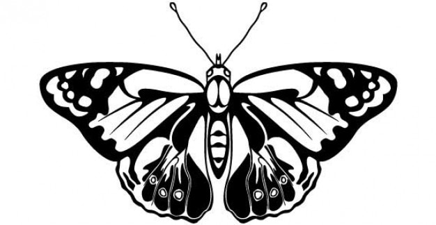 Animal Outlines Butterfly