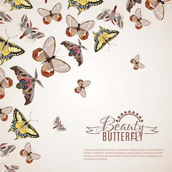 Butterfly realistic background