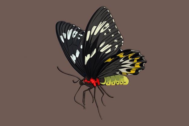 Бабочка реалистичный рисунок руки