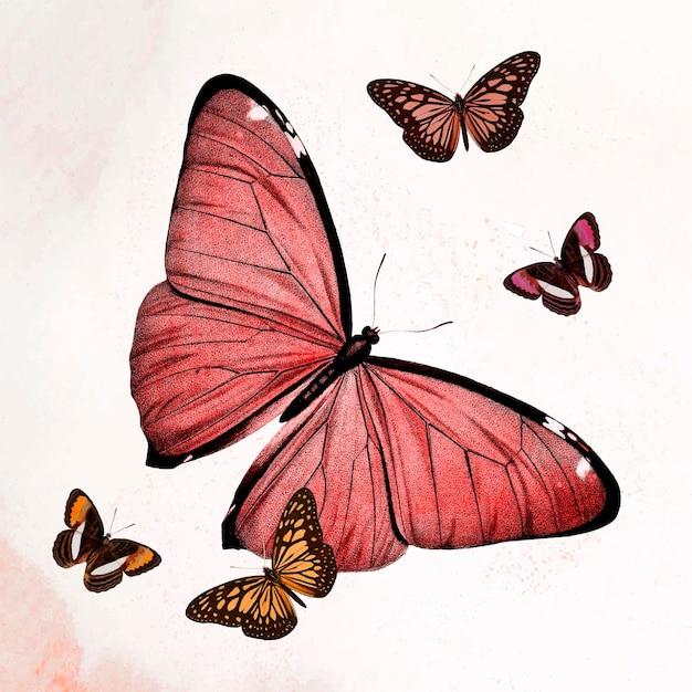ヴィンテージのパブリックドメインの画像からリミックスされた蝶の赤いイラストベクトル