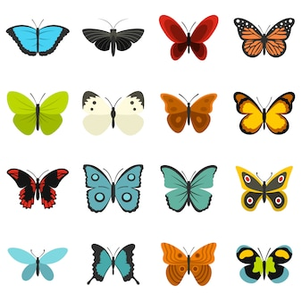 Butterfly set flat icons