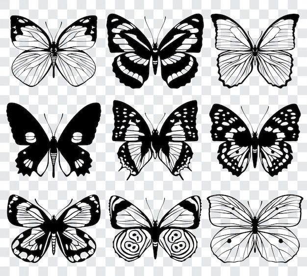 Butterfly silhouettes macro collection. set of butterfly set, illustration of black silhouette
