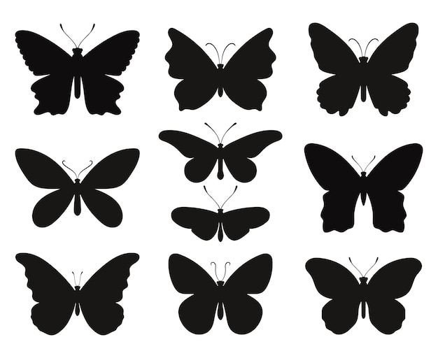 Butterfly silhouettes set. black stencils shapes of butterflies and moths, contours spring papillon, vector illustration symbols of outlines fauna creatures isolated on white backgr