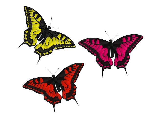 Бабочка векторные иллюстрации