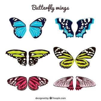 나비 날개 팩