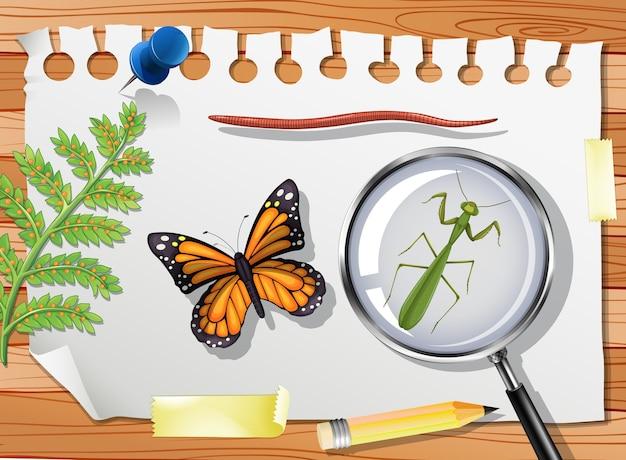 Бабочка с богомолом и увеличительным стеклом на столе крупным планом
