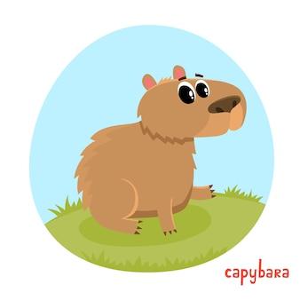 漫画のスタイルのカピバラ。白い背景で隔離の野生動物のイラスト。かわいい動物園アルファベット、手紙c.雑誌、ポスター、カード、本、webページに使用されるイラスト。