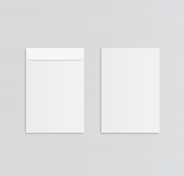 C4 blank vector