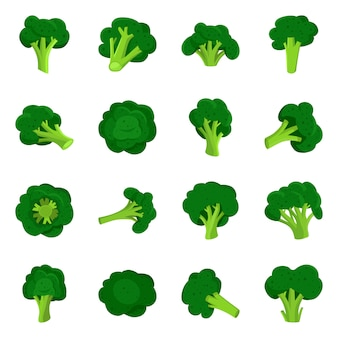 Cabbage broccoli cartoon elements. isolated illustration of vegetables and broccoli. set of elements cabbage.
