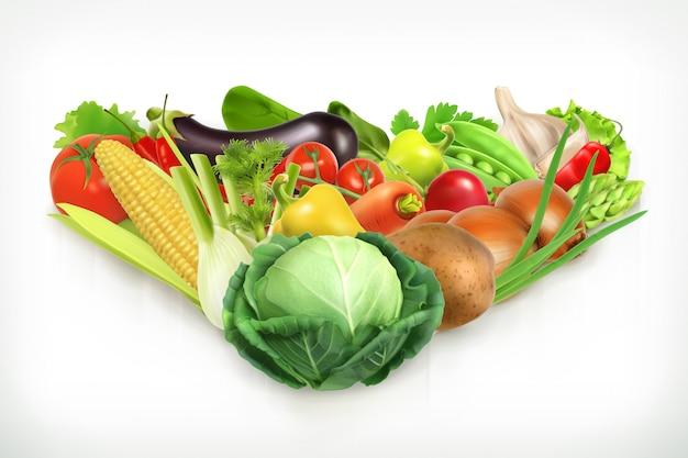 キャベツ、収穫ジューシーで熟した野菜のベクトル図
