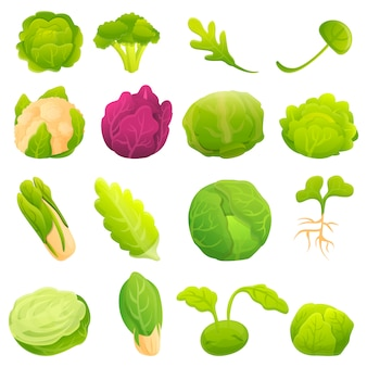 Cabbage icons set, cartoon style
