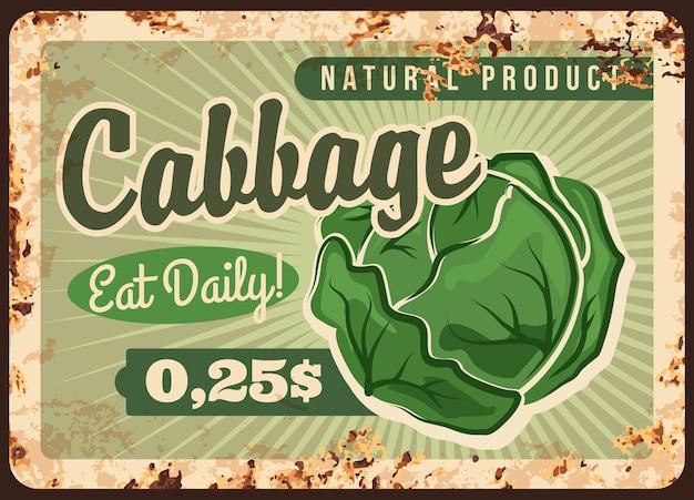 キャベツのさびた金属板。緑のキャベツの頭。天然野菜