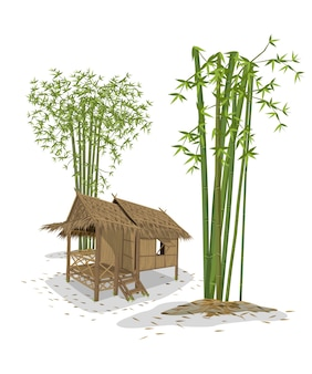 Cabin and bamboo